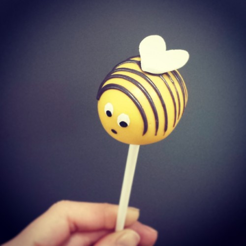 Delish bee cake pop